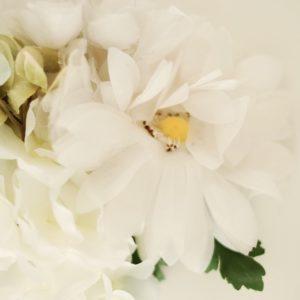 Blumen Brosche Wintersommer